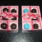 Sekat 6 blueberry & Sekat 6 warna